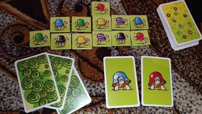 Pędzące żółwie - GameBy.pl